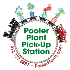Pooler Plant Pick-Up Station